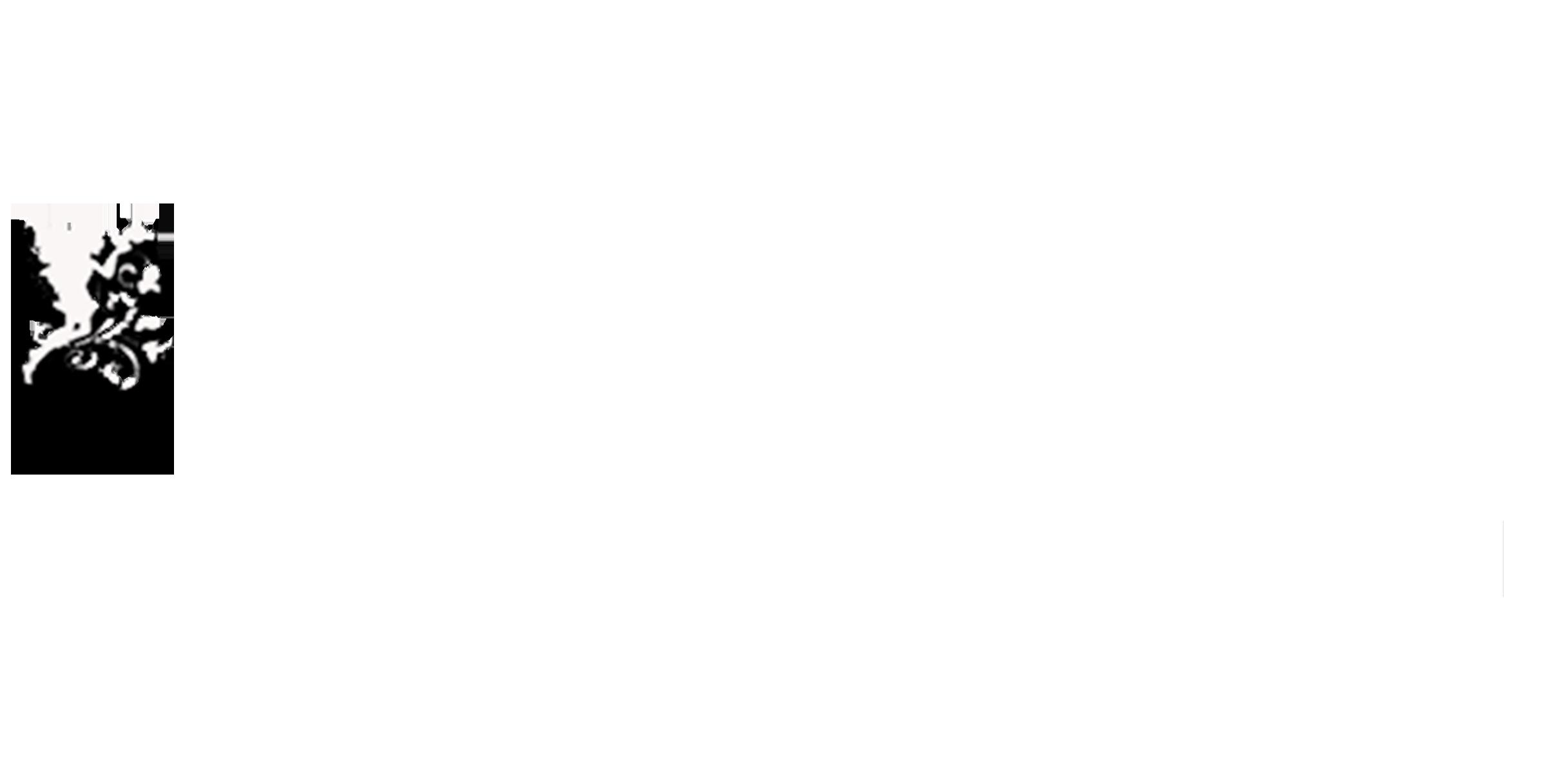 Düğün Fotoğrafçısı – VİP Düğün Fotoğrafçısı